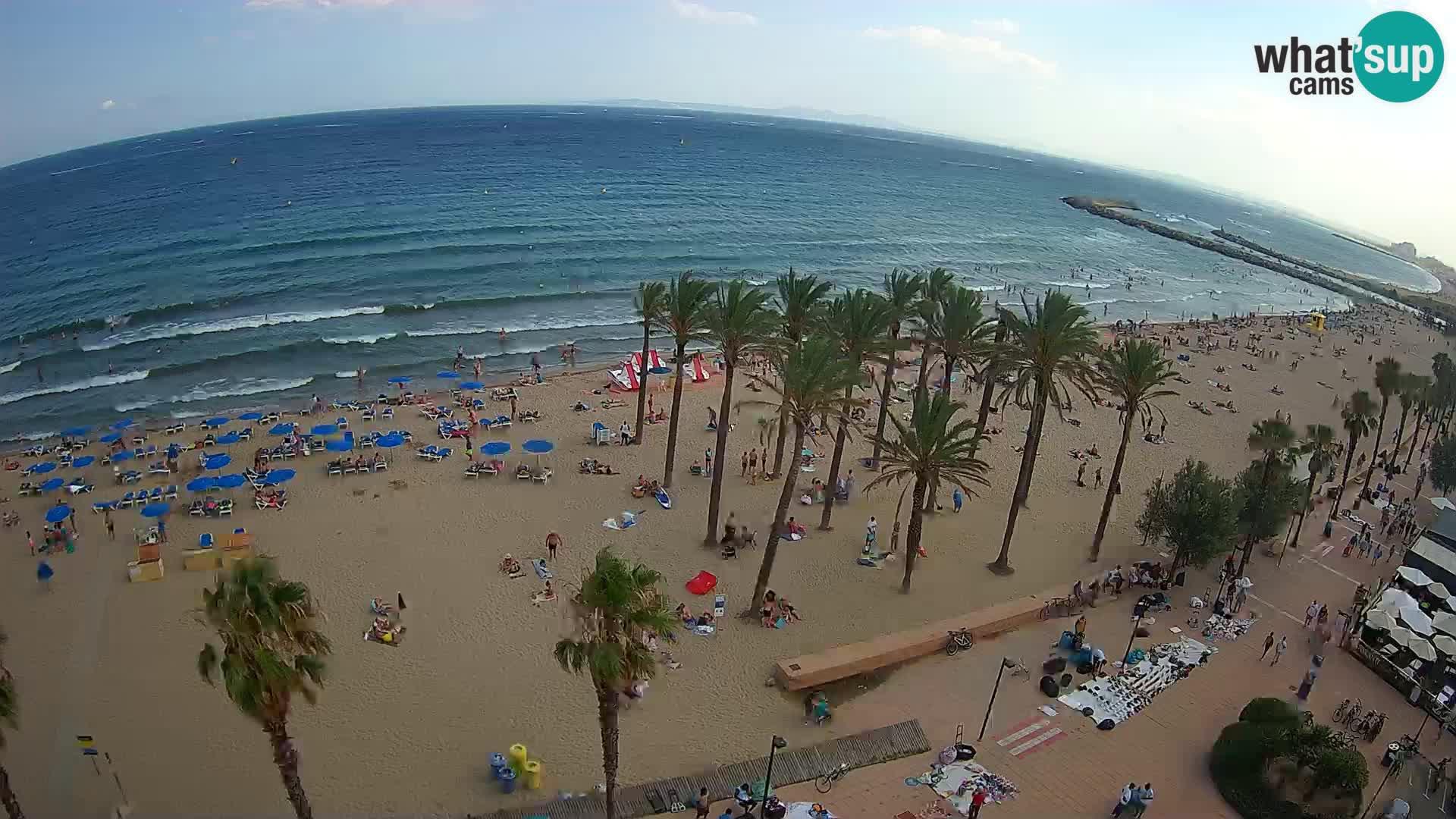 Webcam Roses Strand – Hotel Montecarlo