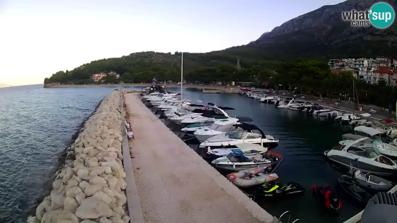Zivogosce, Blato - marina