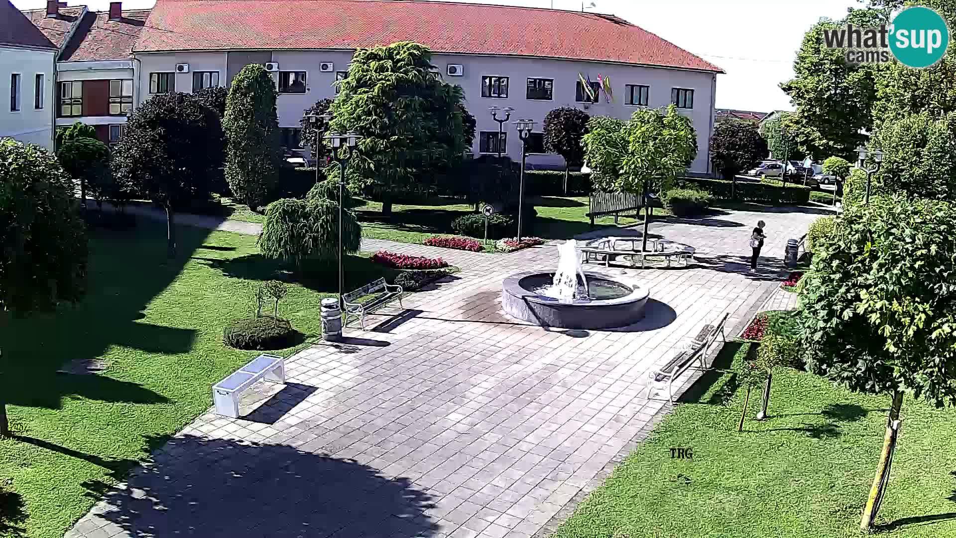 Čazma – Plaza Čazmanskog Kaptola