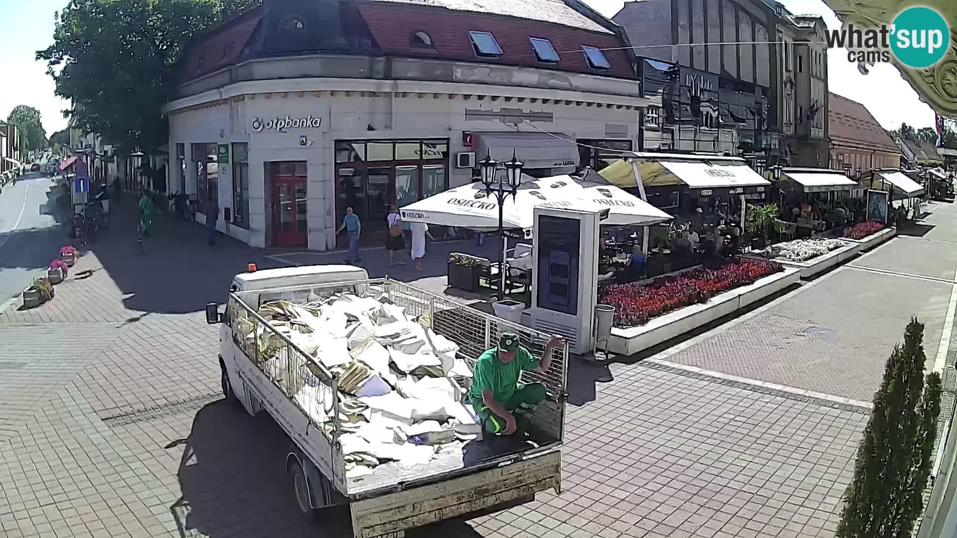 Djakovo canera en vivo – Korzo