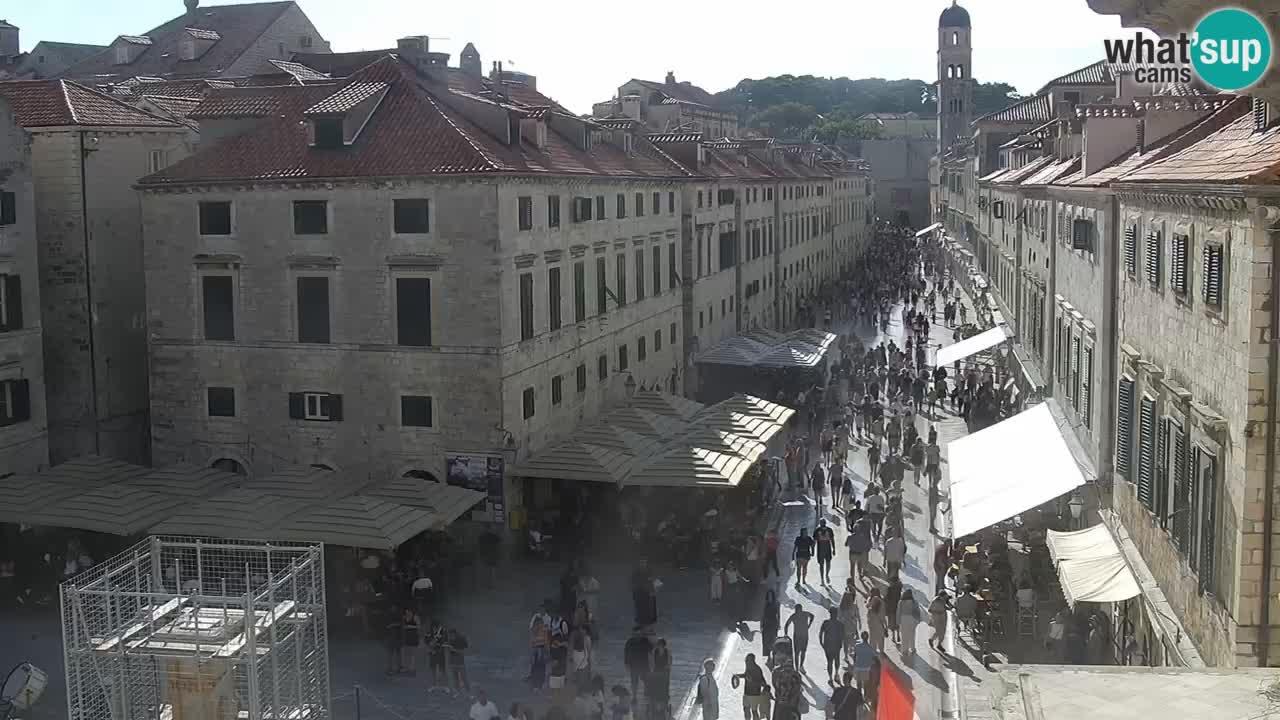 Camera en vivo Dubrovnik Stradun