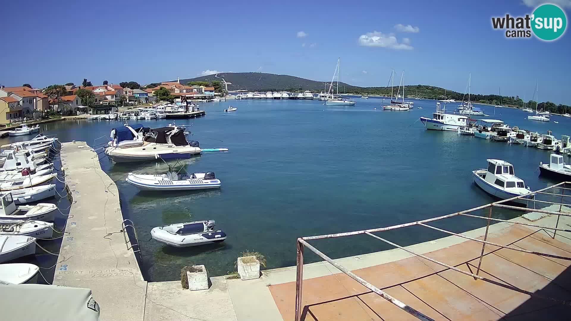 Camera en vivo Ilovik – Sveti Petar