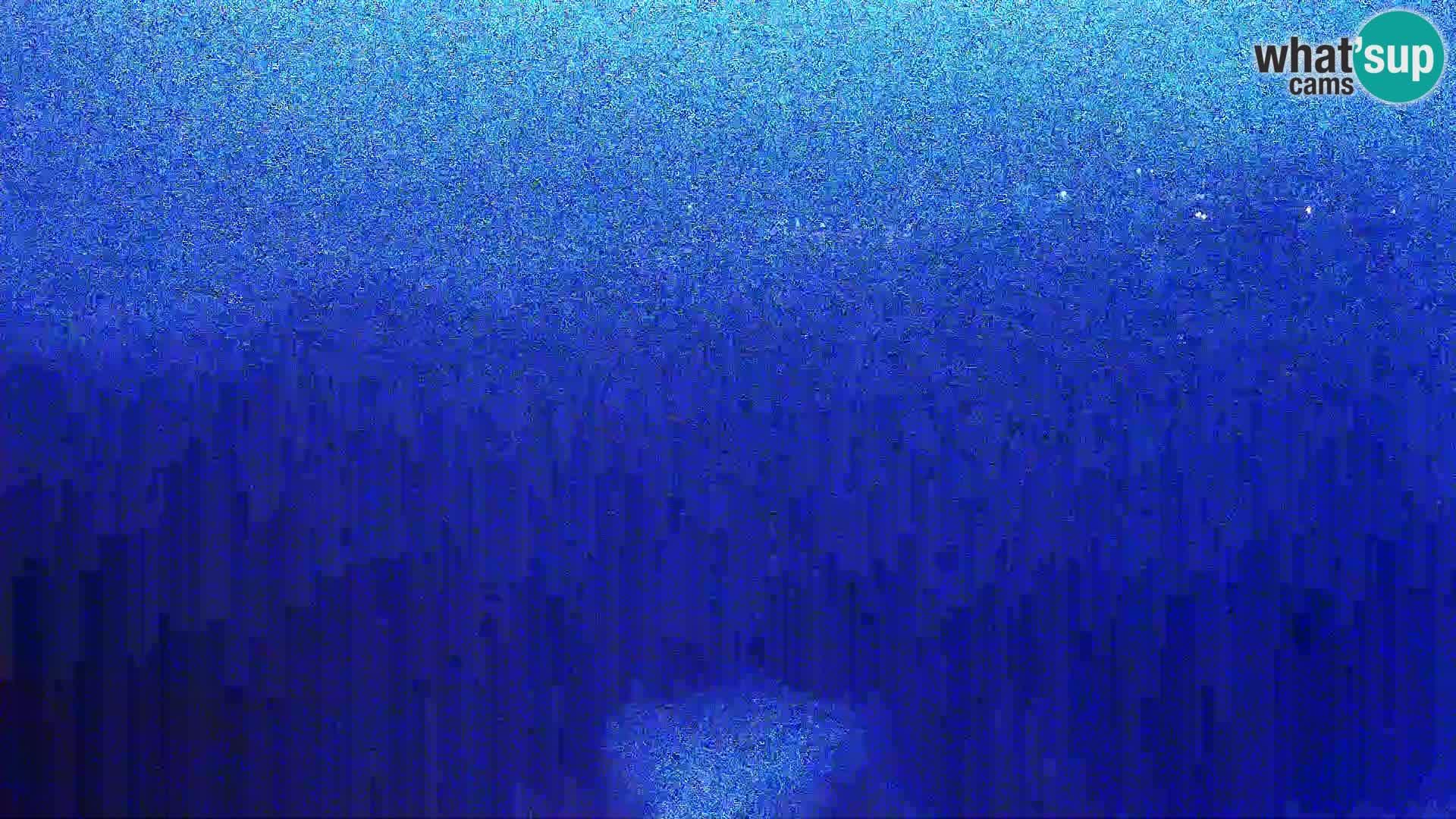 View from Gligora Cheese Factory Kolan – Pag island