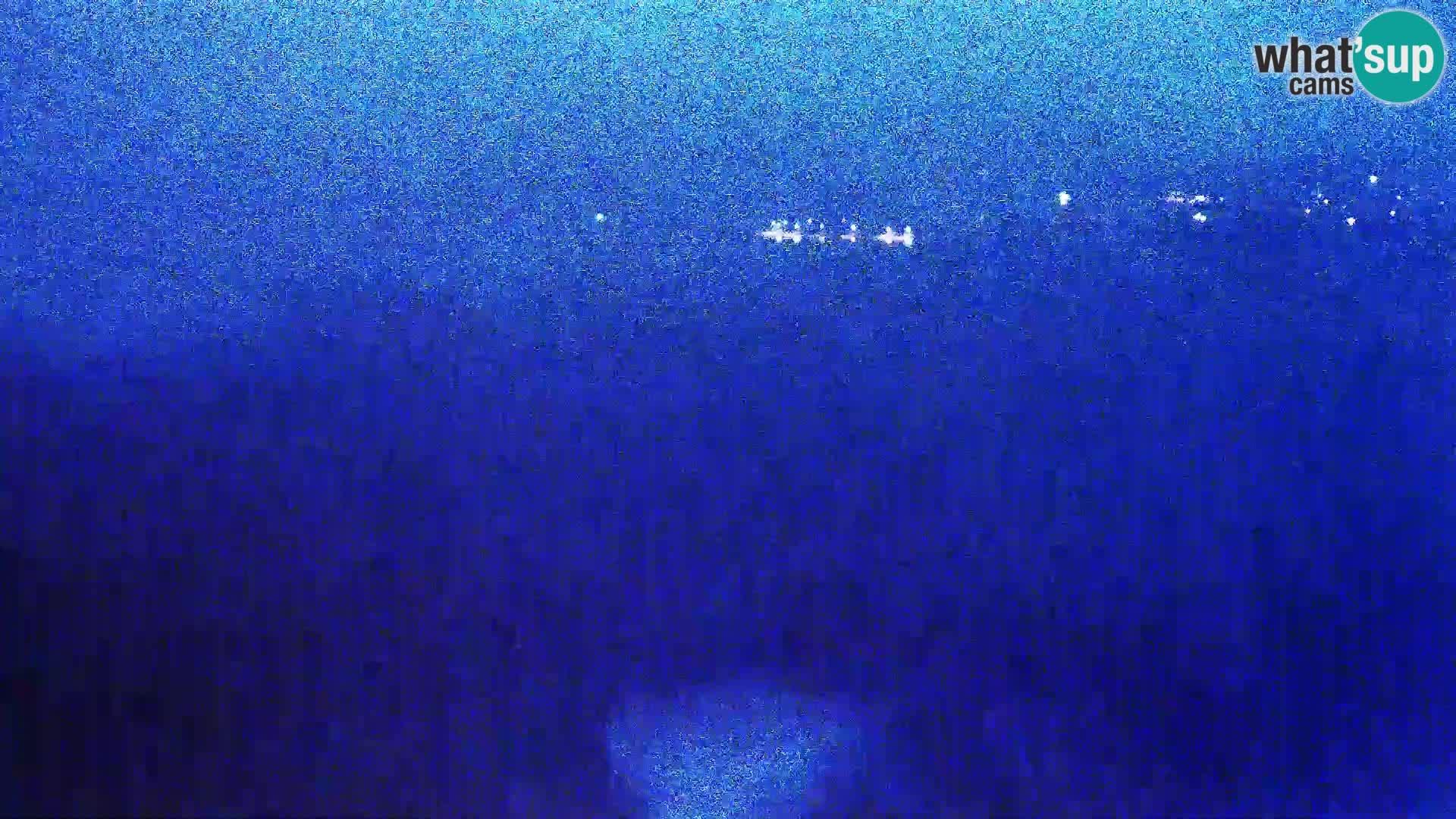 Vue de l'usine de fromage Gligora Kolan – île de Pag