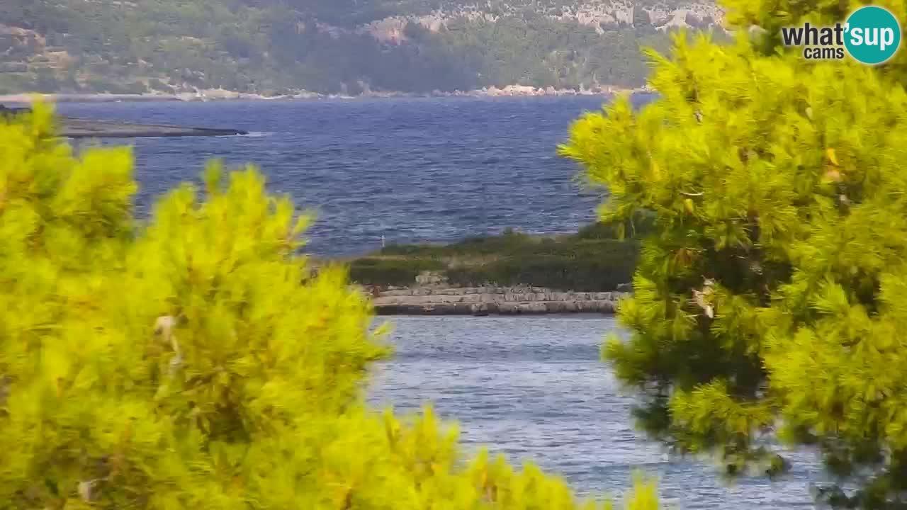 Lumbarda resort Spletna kamera Korčula