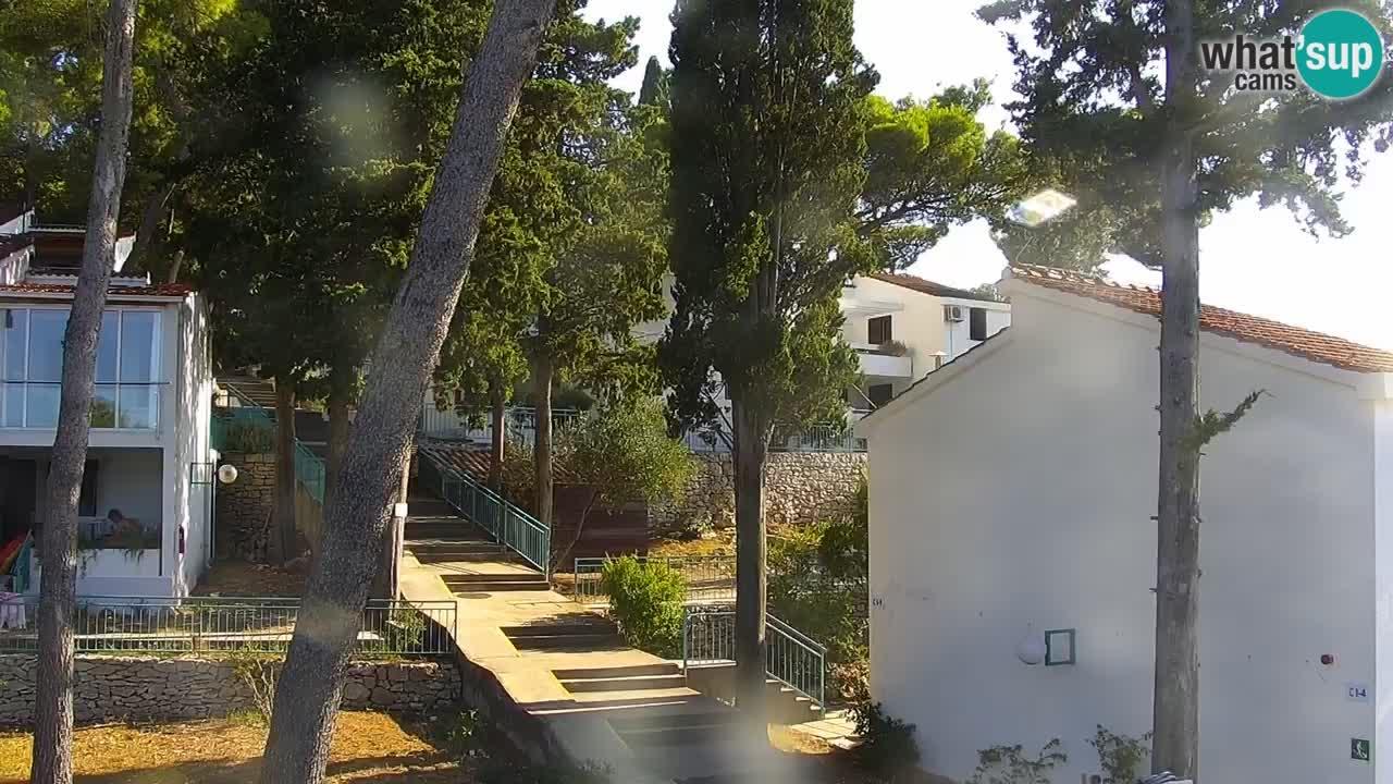 Lumbarda resort Web Kamera Korčula