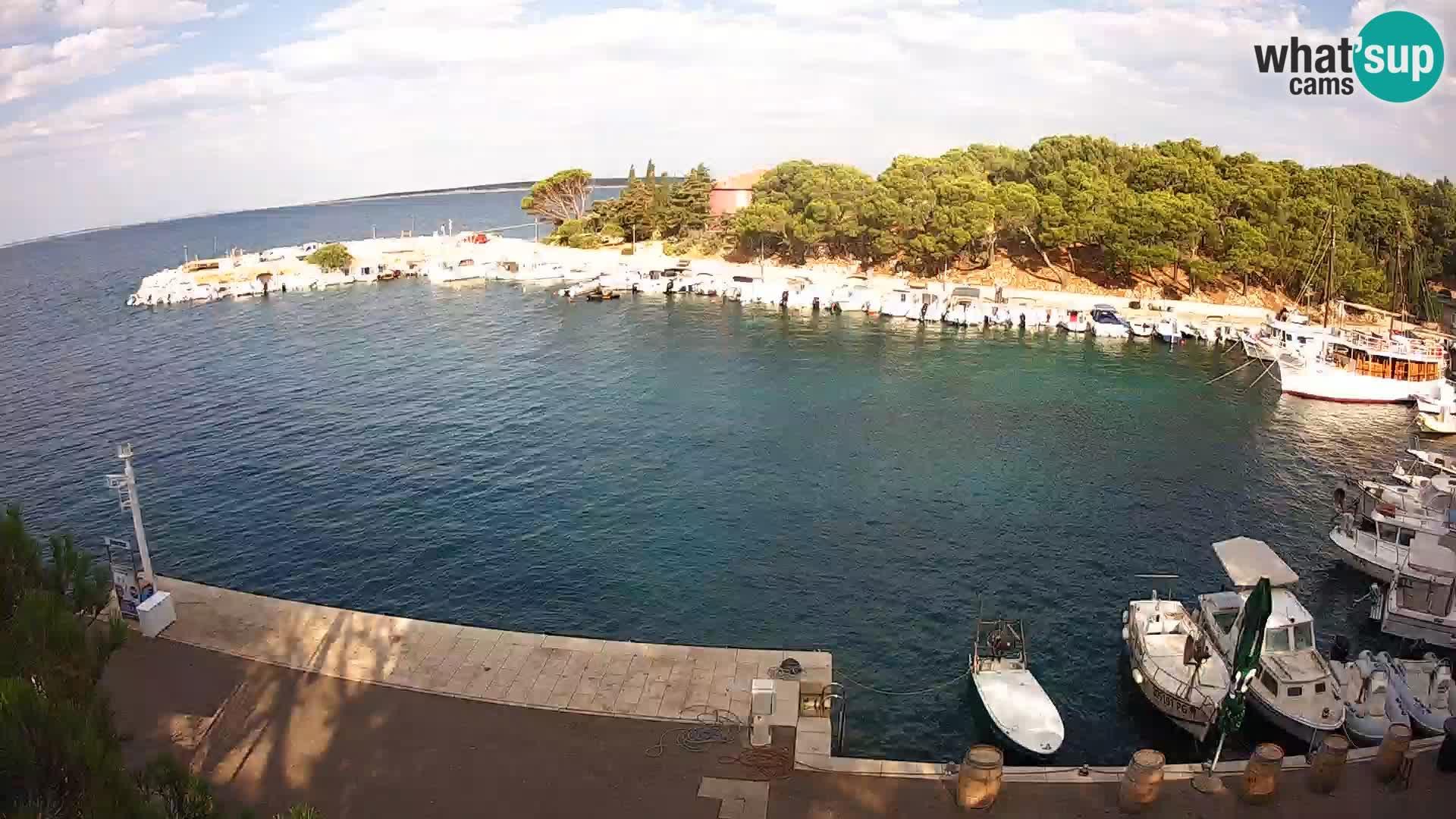 Mandre – marina