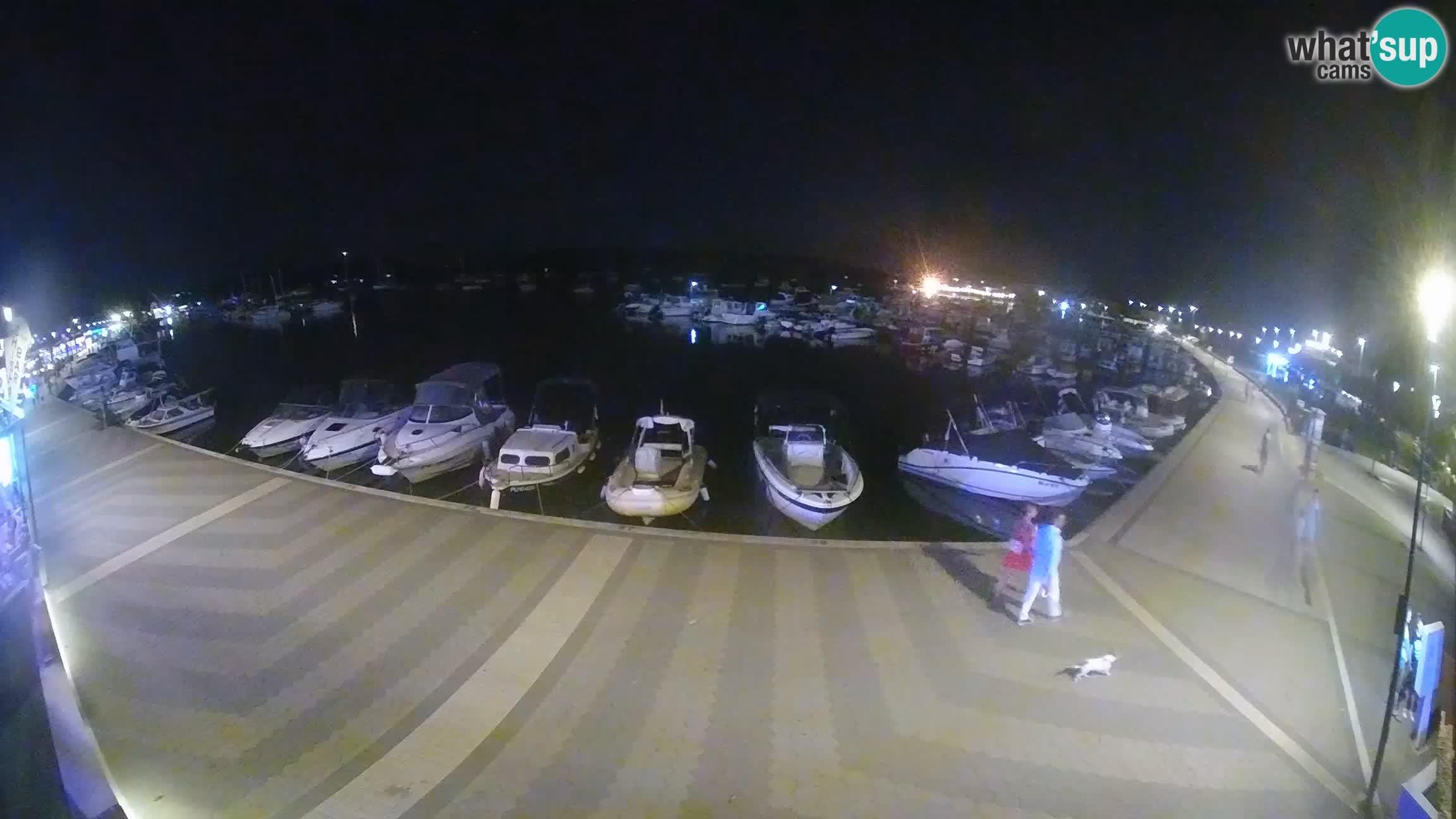 Livecam Medulin marina