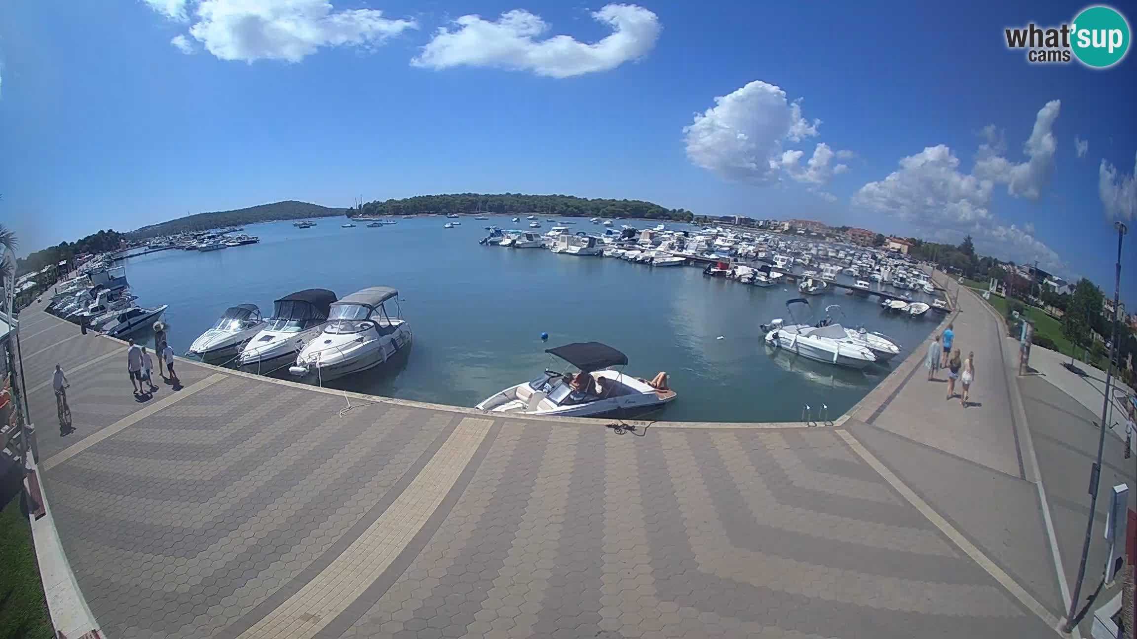 Web Kamera Medulin marina