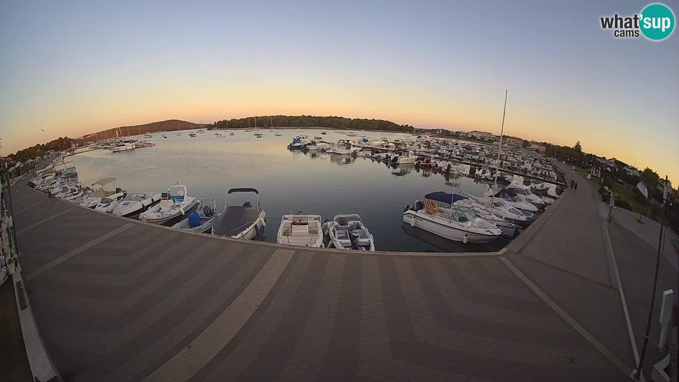 Camera en vivo Medulin marina