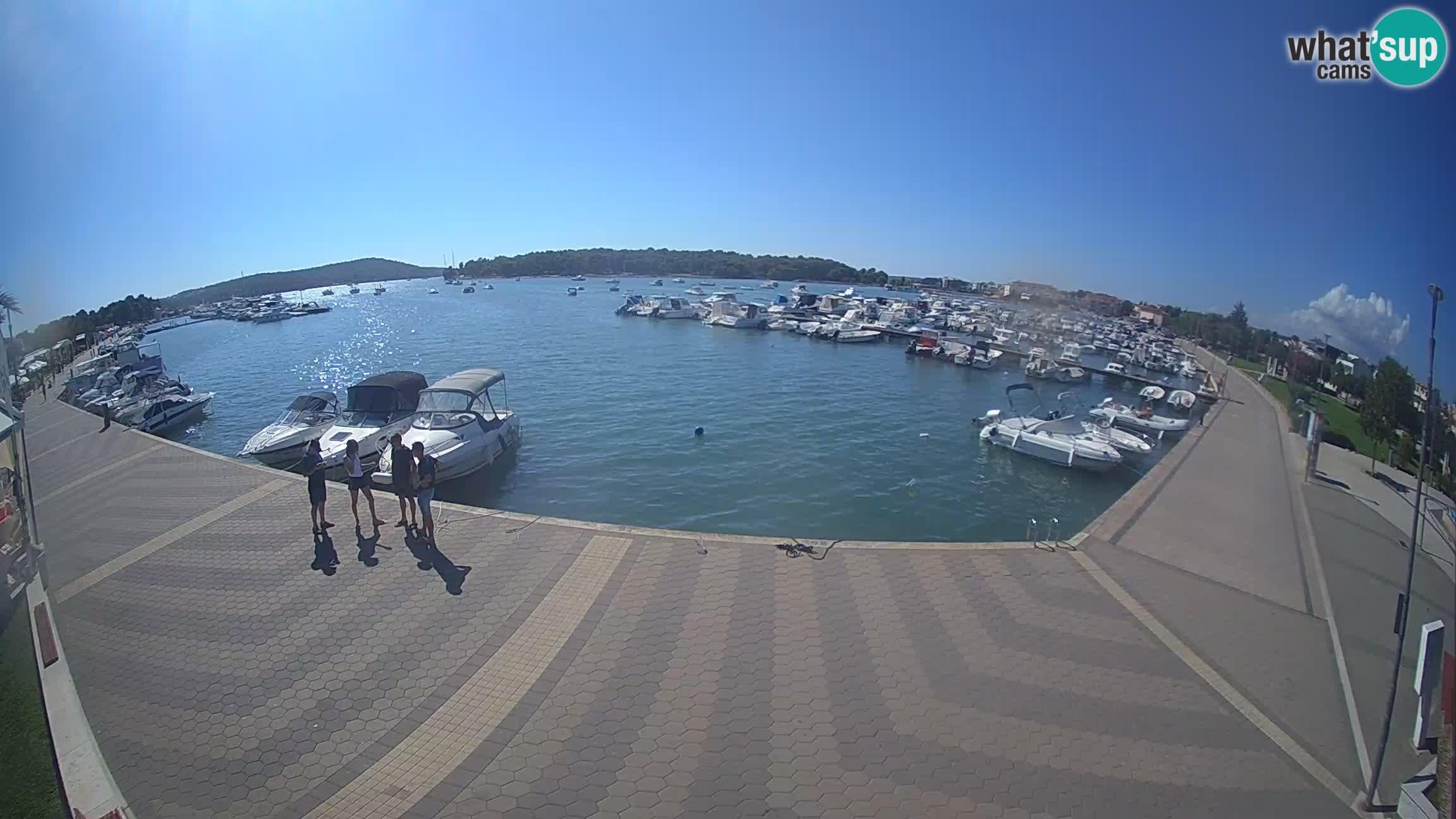 LIVE webcam Medulin marina