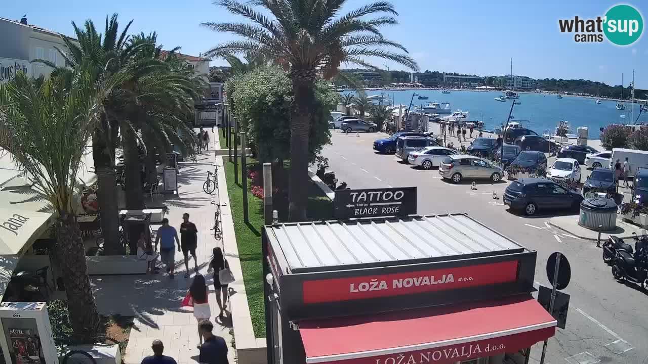 Spletna kamera Novalja – Obala Petra Krešimira IV
