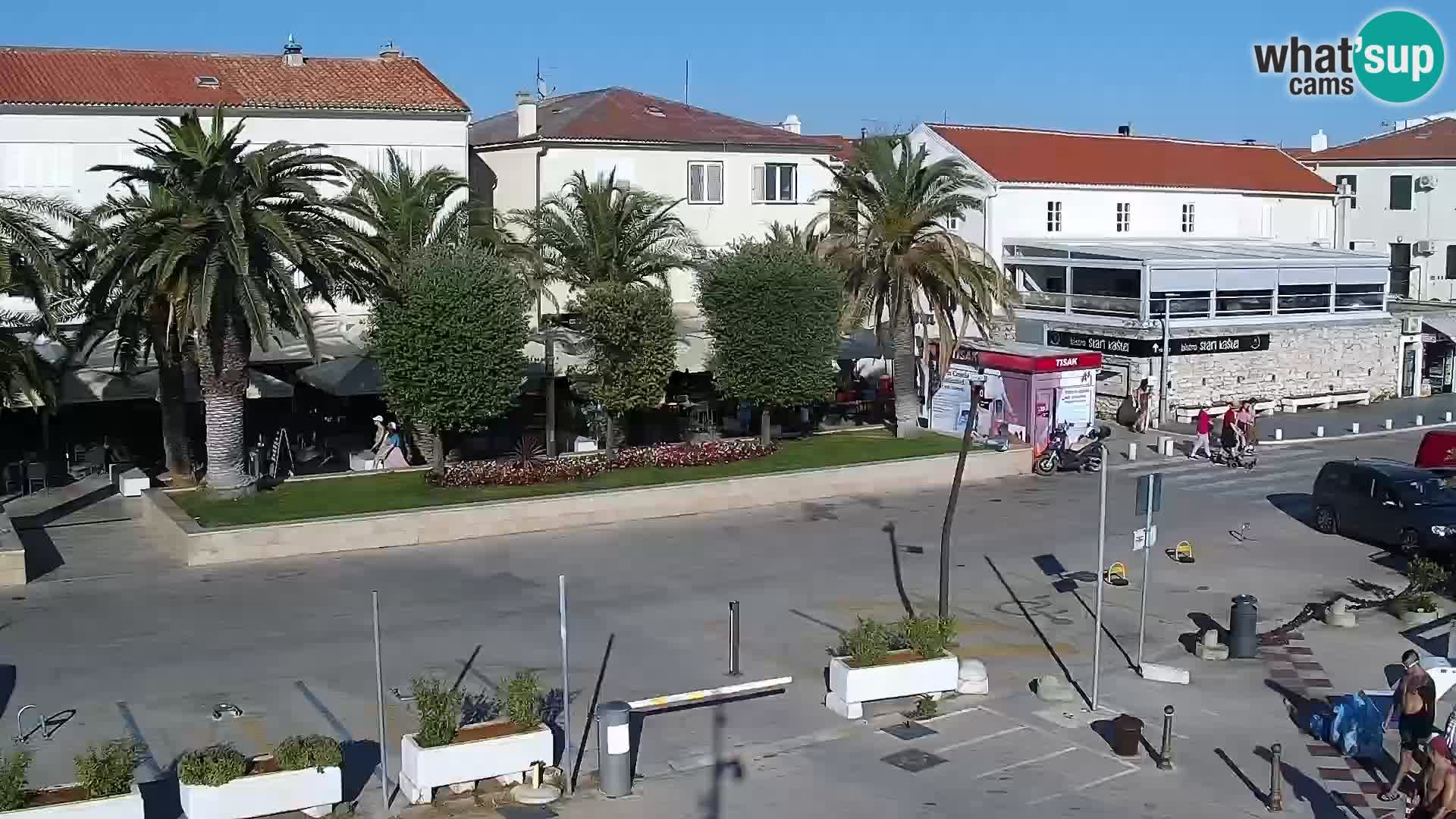 Promenade en Novalia Camera en vivo