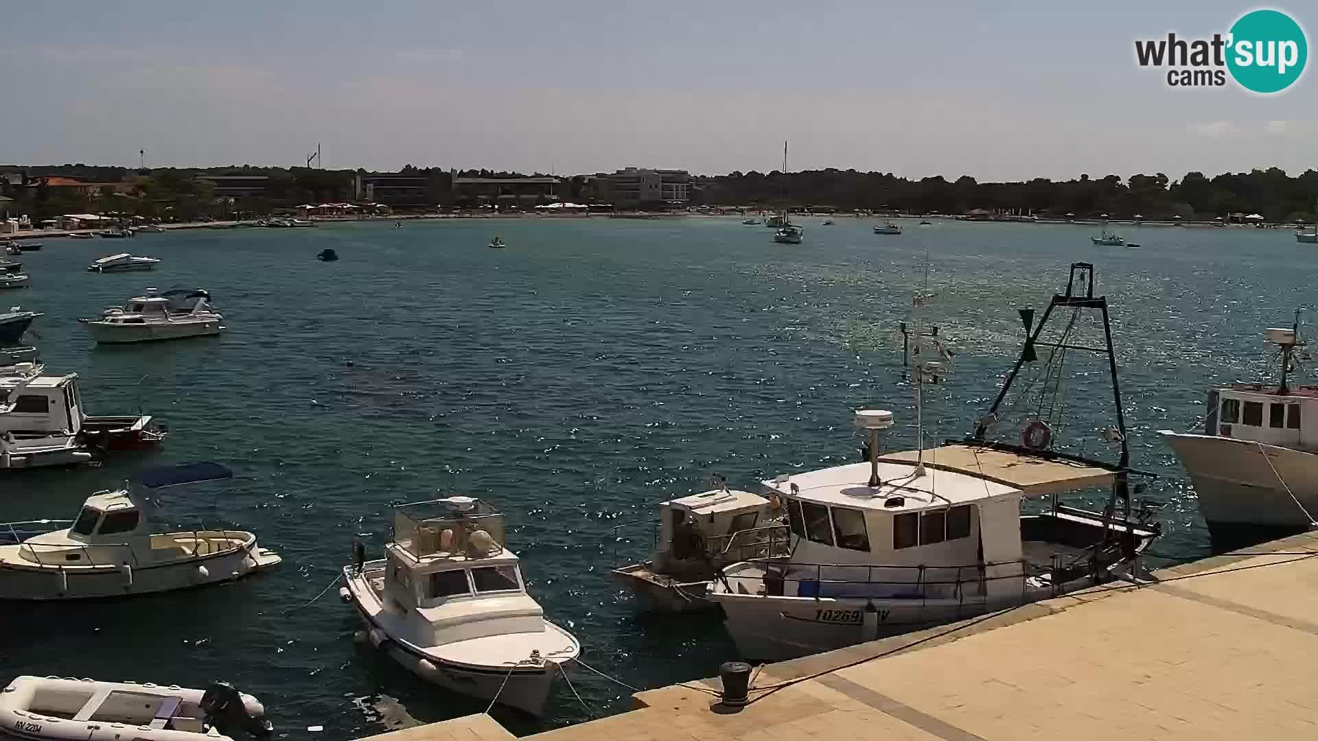 Web kamera Novalja promenada