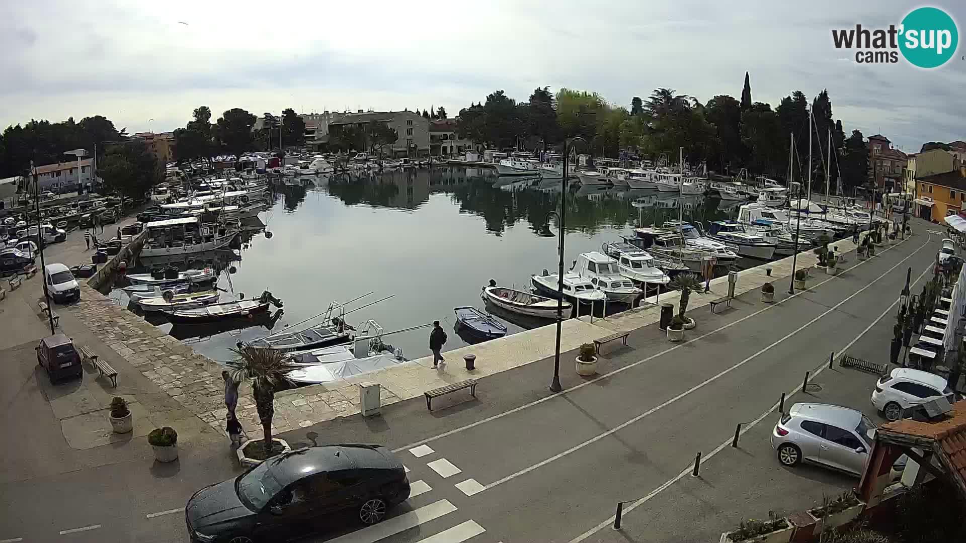 """Novigrad – vieux port """"Mandrač"""""""