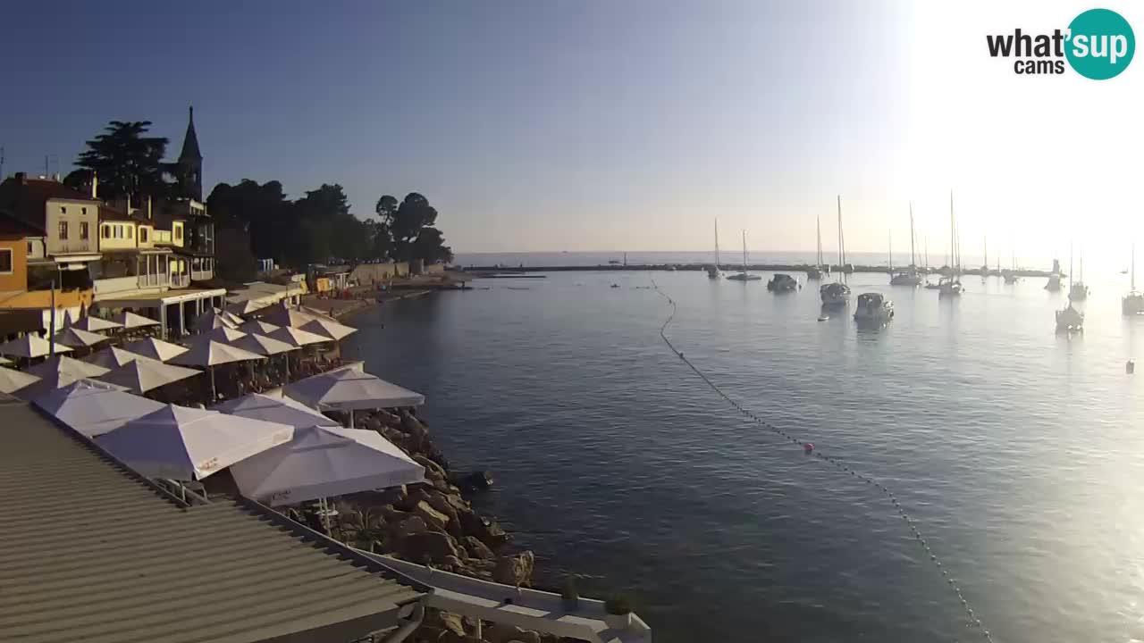 Novigrad live webcam – Porporela