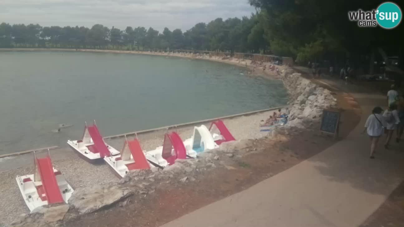 Novigrad – Strand Karpinjan webcam