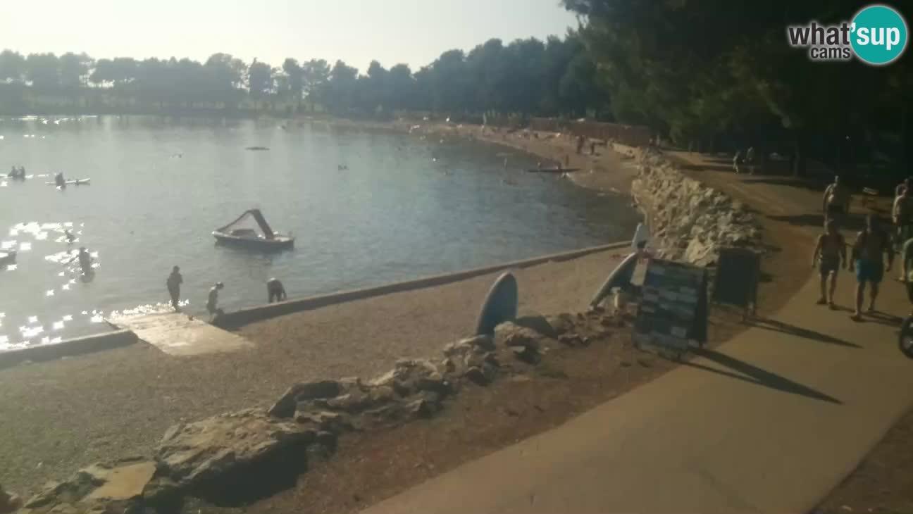 Novigrad – Plaža Karpinjan