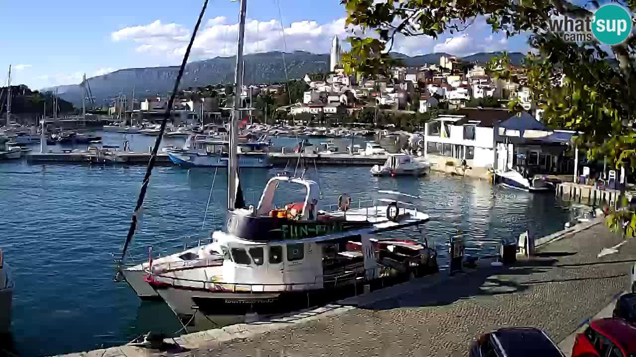 Webcam live – Novi Vinodolski harbour