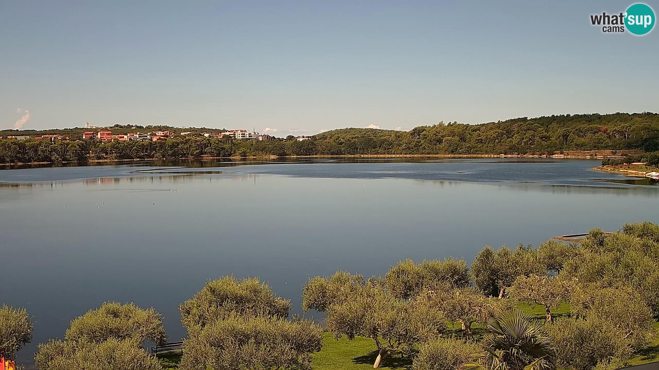 Spletna kamera v živo Pomer – Šćuza – Medulin – Istra – Hrvaška