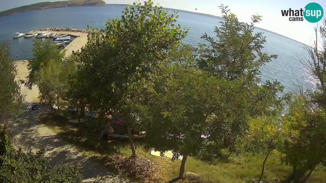 Kamp Odmoree spletna kamera Ražanac – Dalmacija
