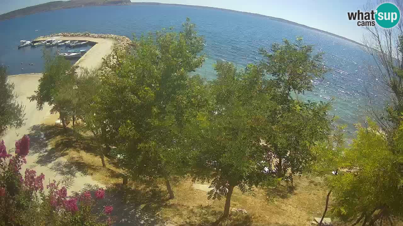 Camping Odmoree webcam Ražanac – Dalmazia