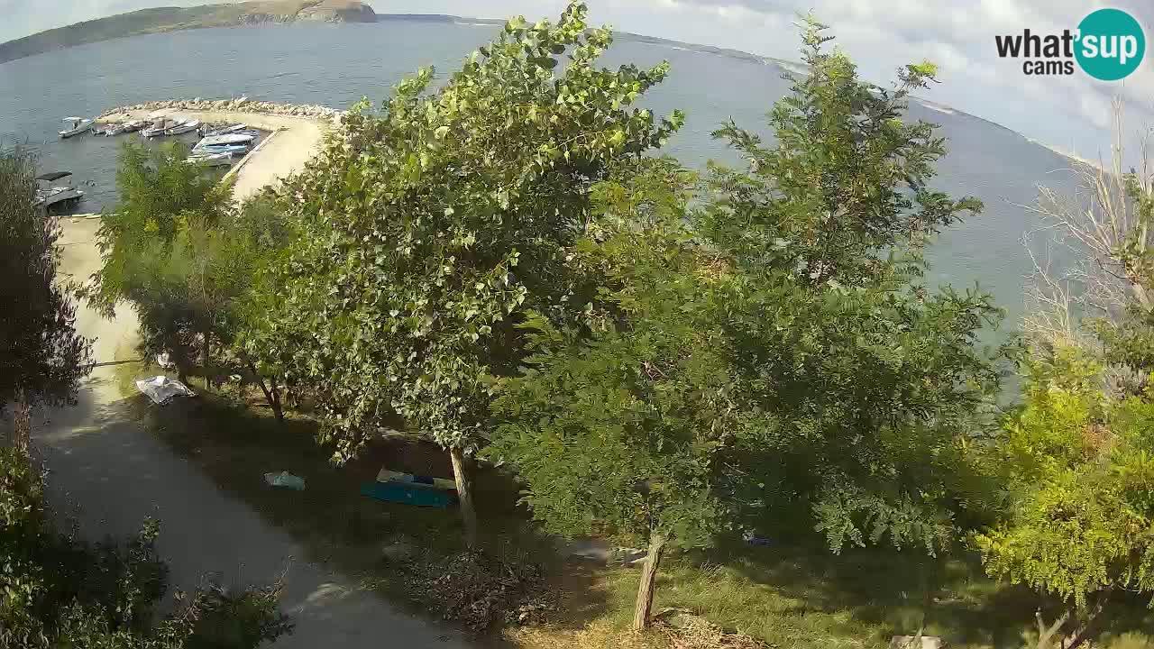 Camping Odmoree web kamera Ražanac – Dalmacija
