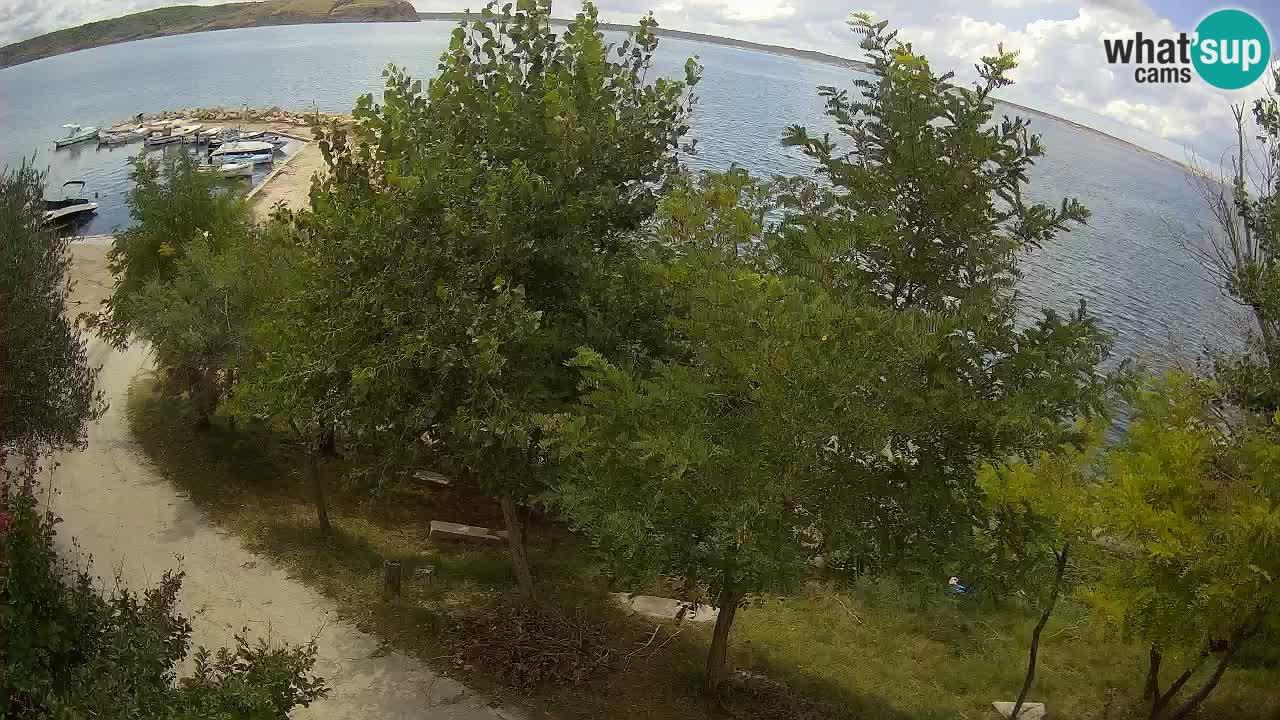 Camping Odmoree live cam Ražanac – Dalmatie