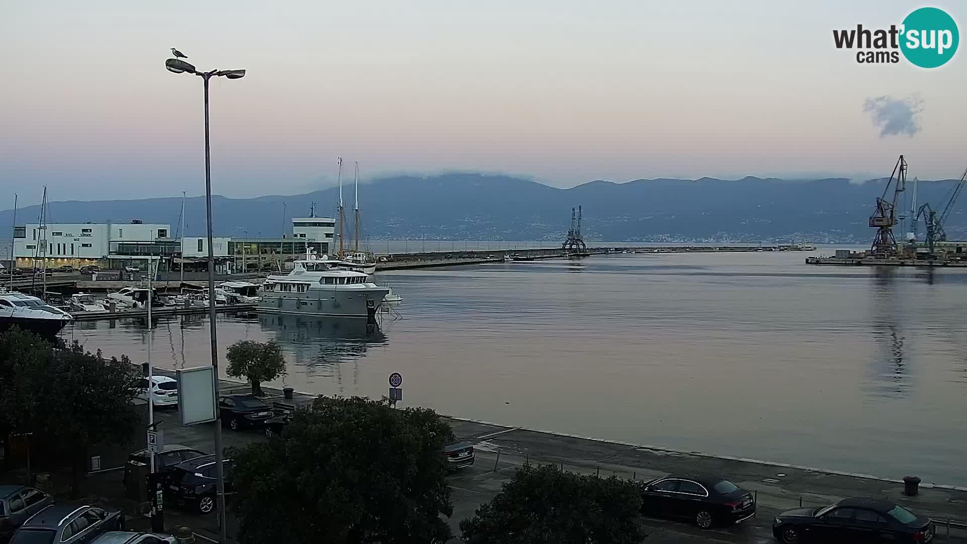 Die Riva und Marina in Rijeka – Live Webcam Kroatien