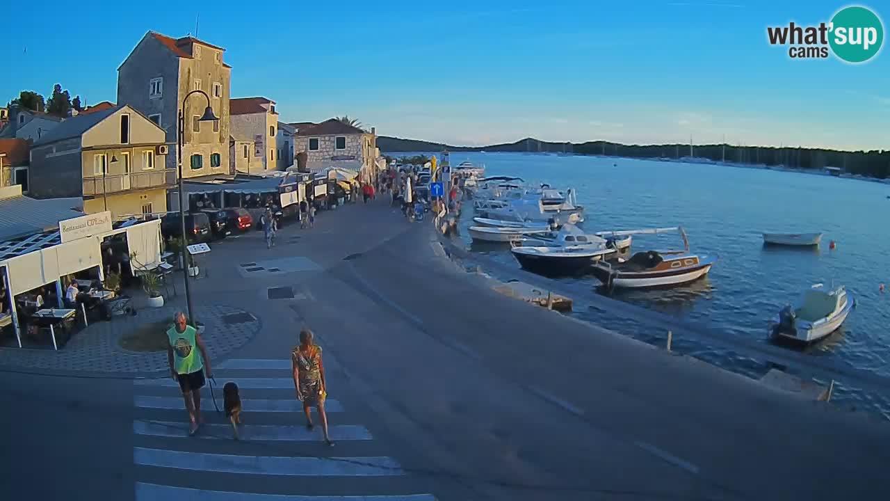 Isola di Rogoznica live cam Croazia