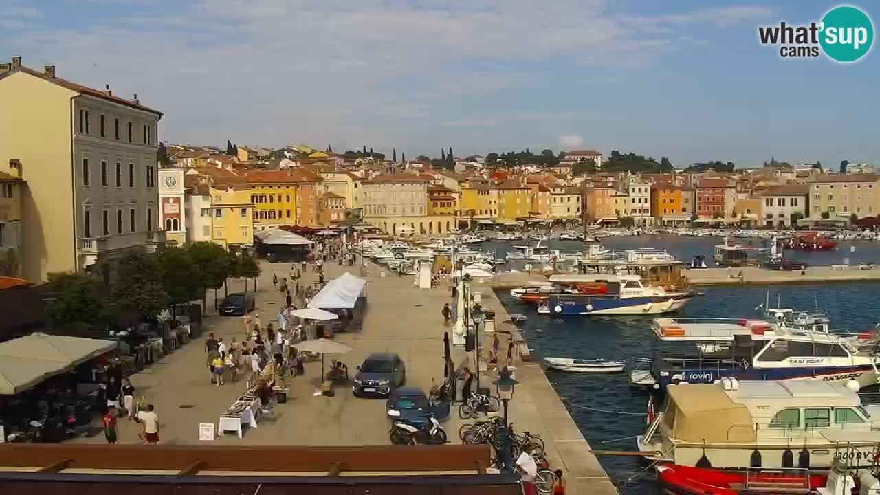 Promenade und marina in Rovinj webcam