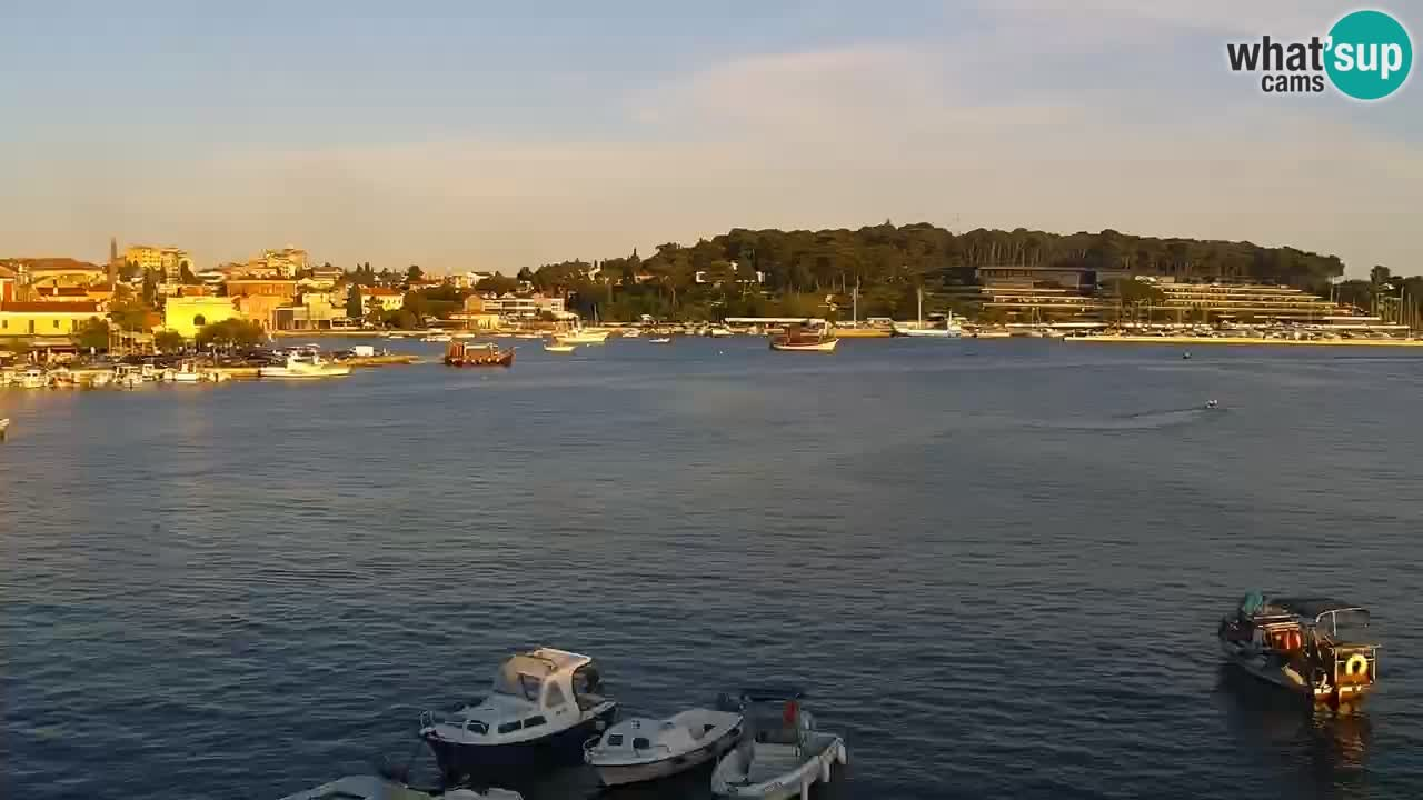 Seaside promenade and marina in Rovinj webcam
