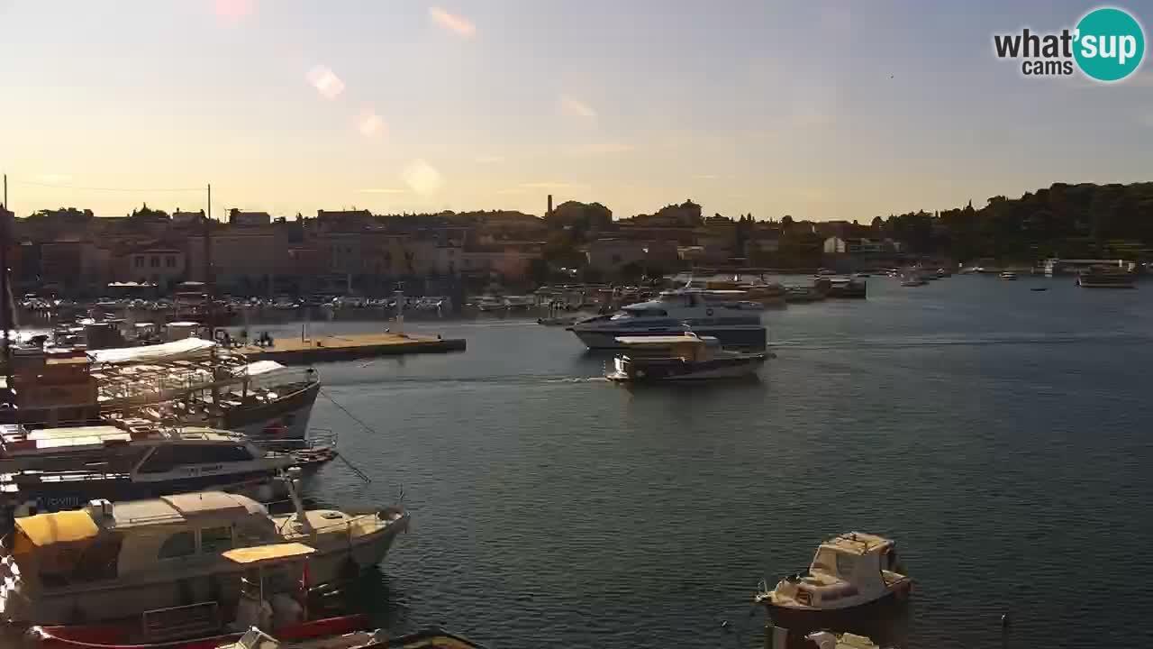 Lungomare e marina a Rovigno