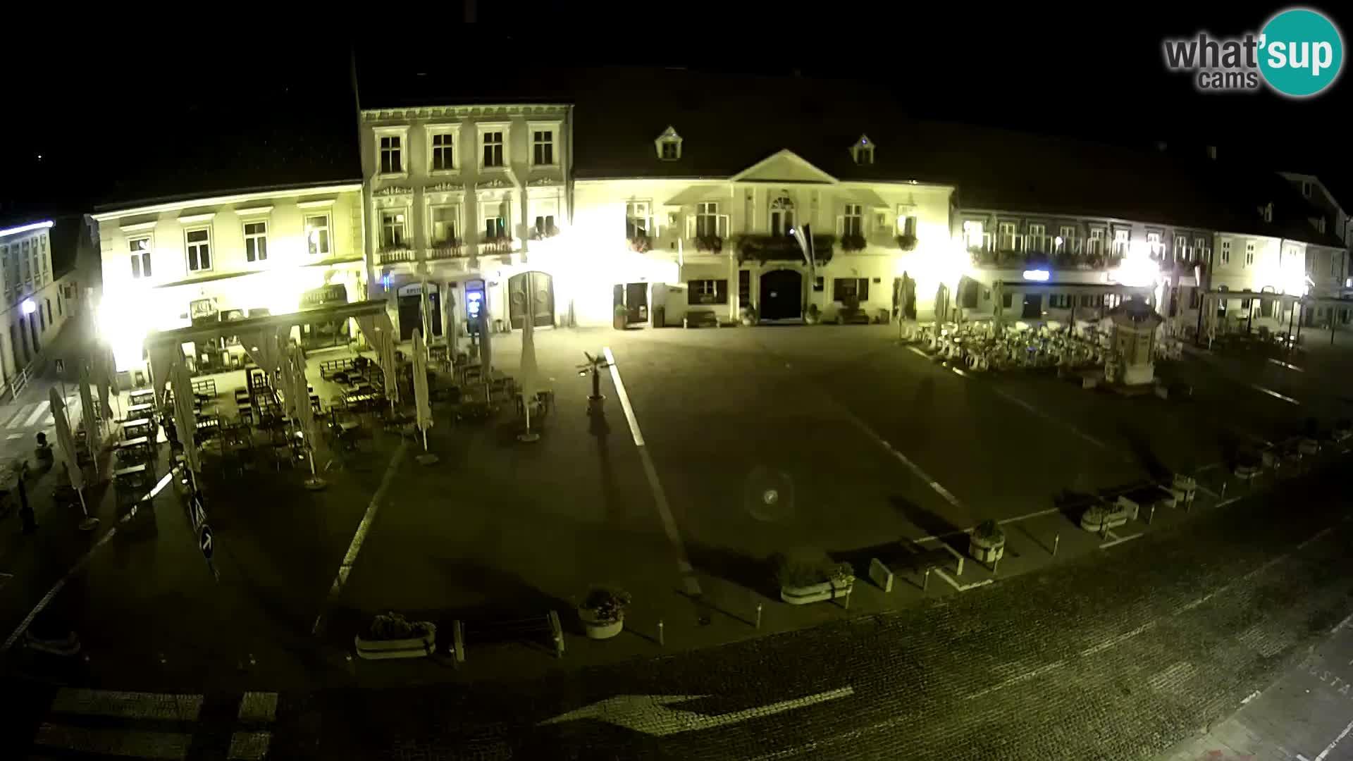 Live webcam Samobor – Pizza principale