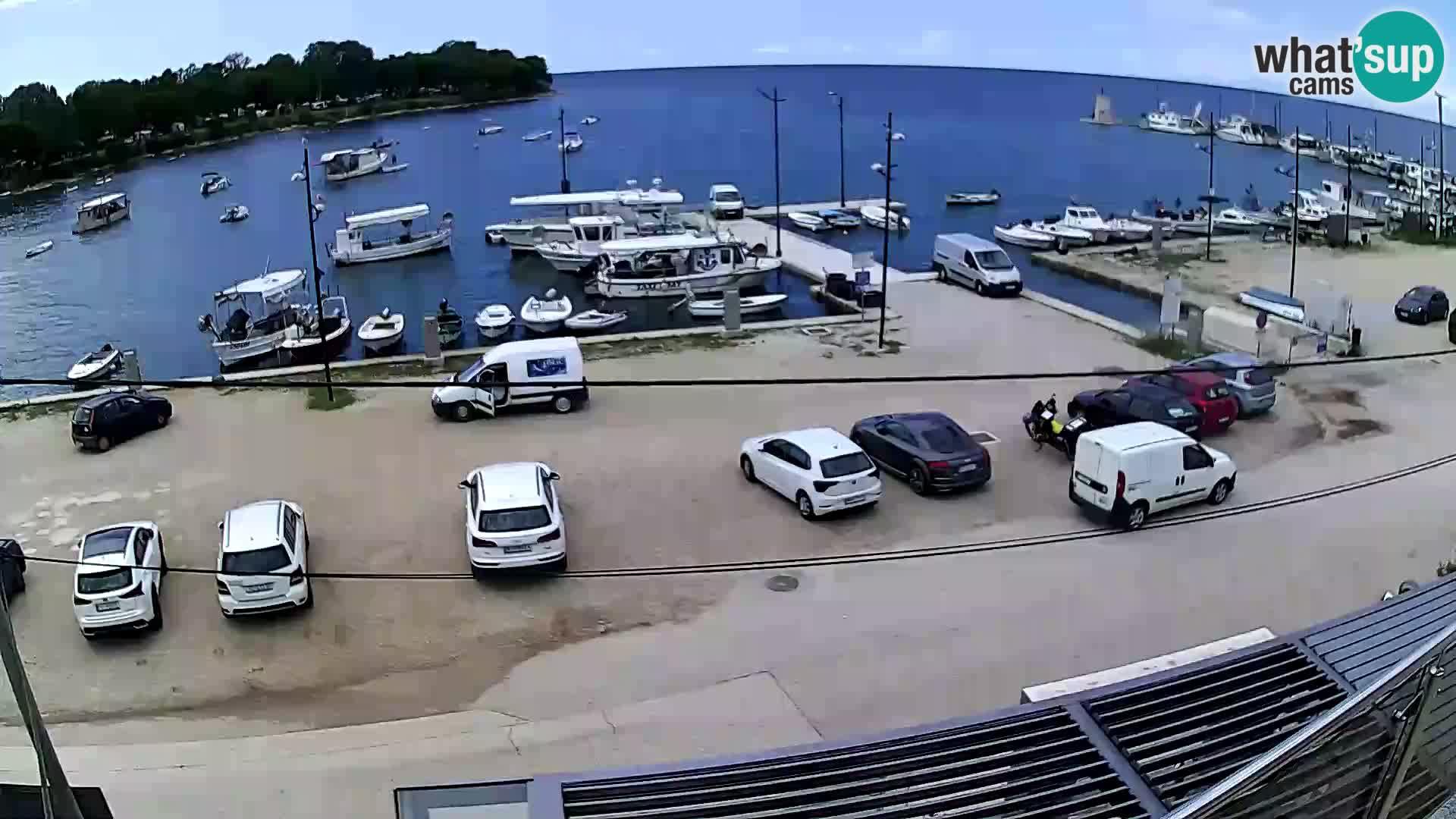 Savudrija webcam – marina