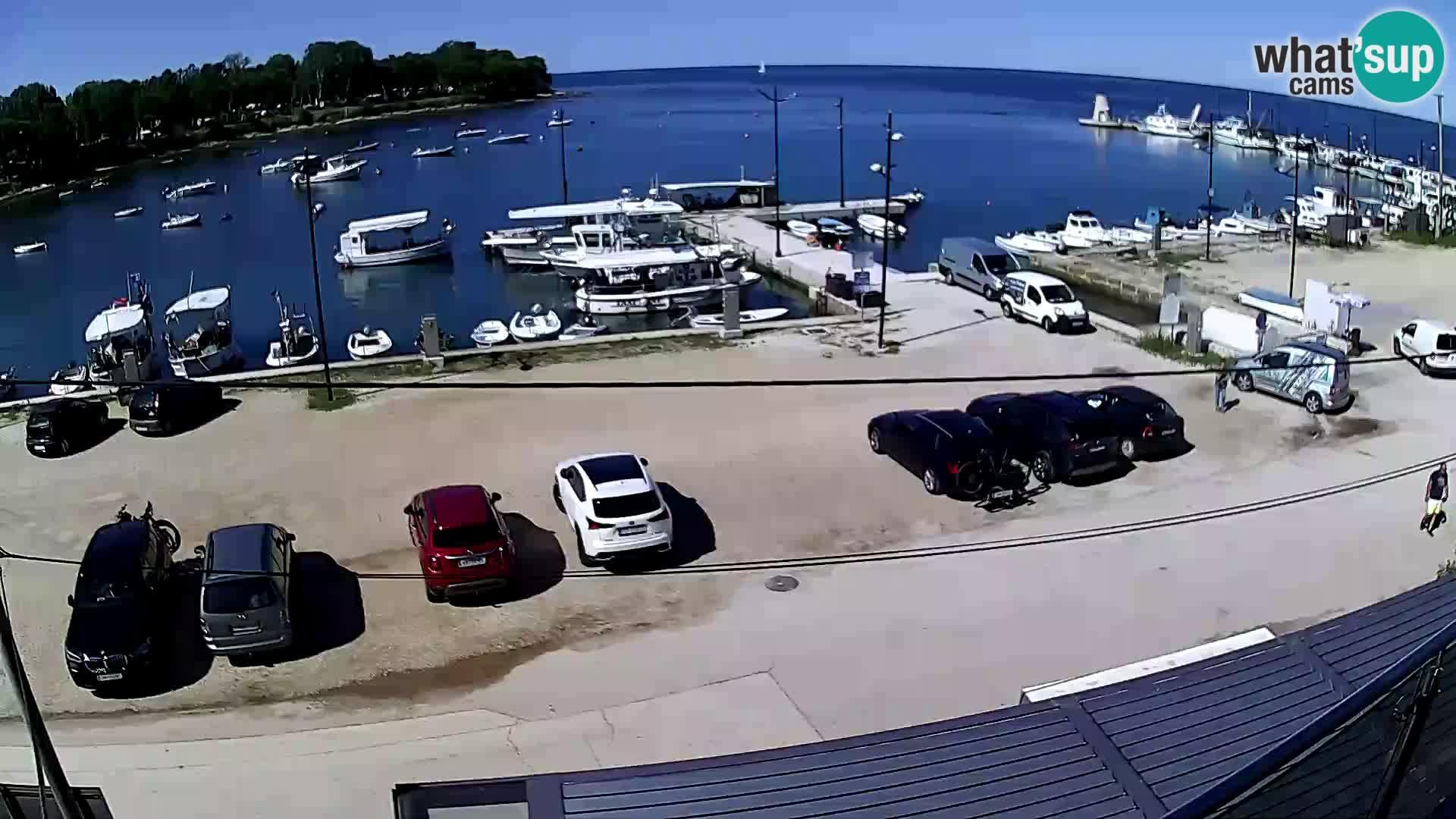Salvore webcam – marina