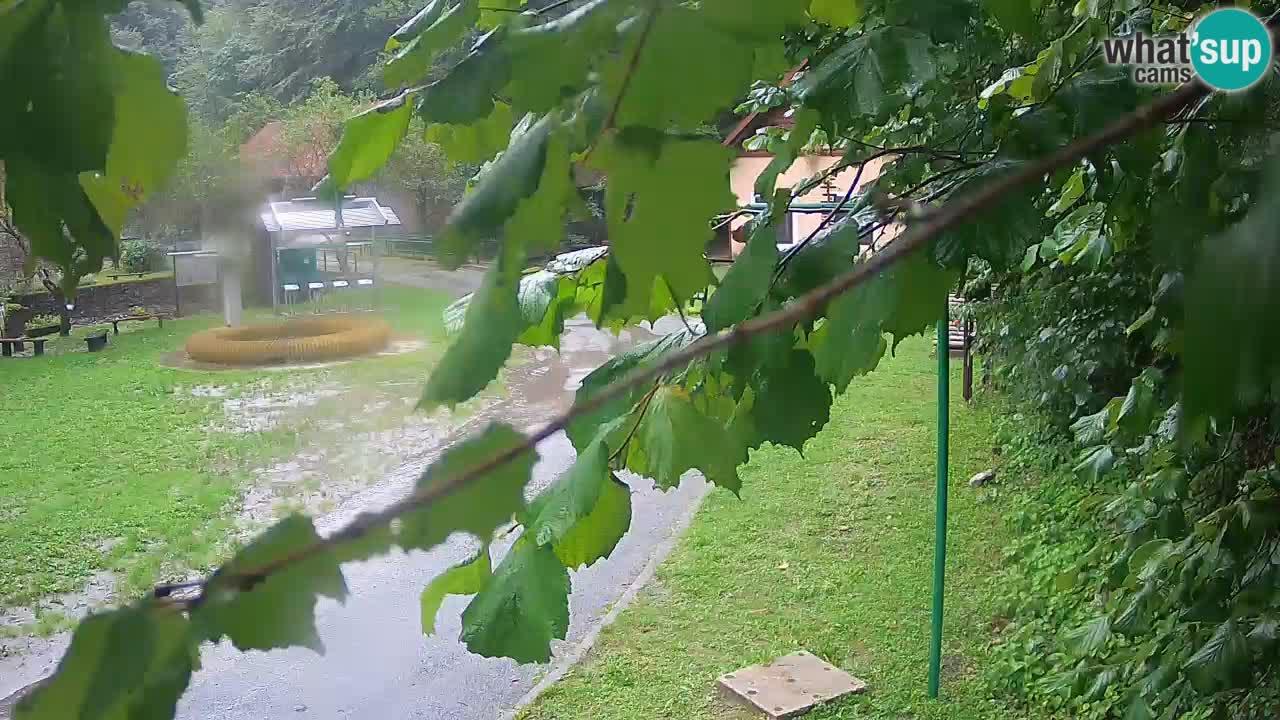 Skrad webcam Zeleni Vir