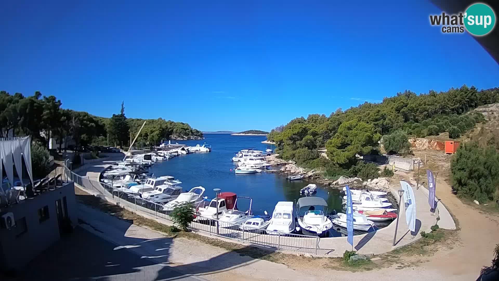 Camera en vivo Sovlje – ANTIC bahía – Tribunj
