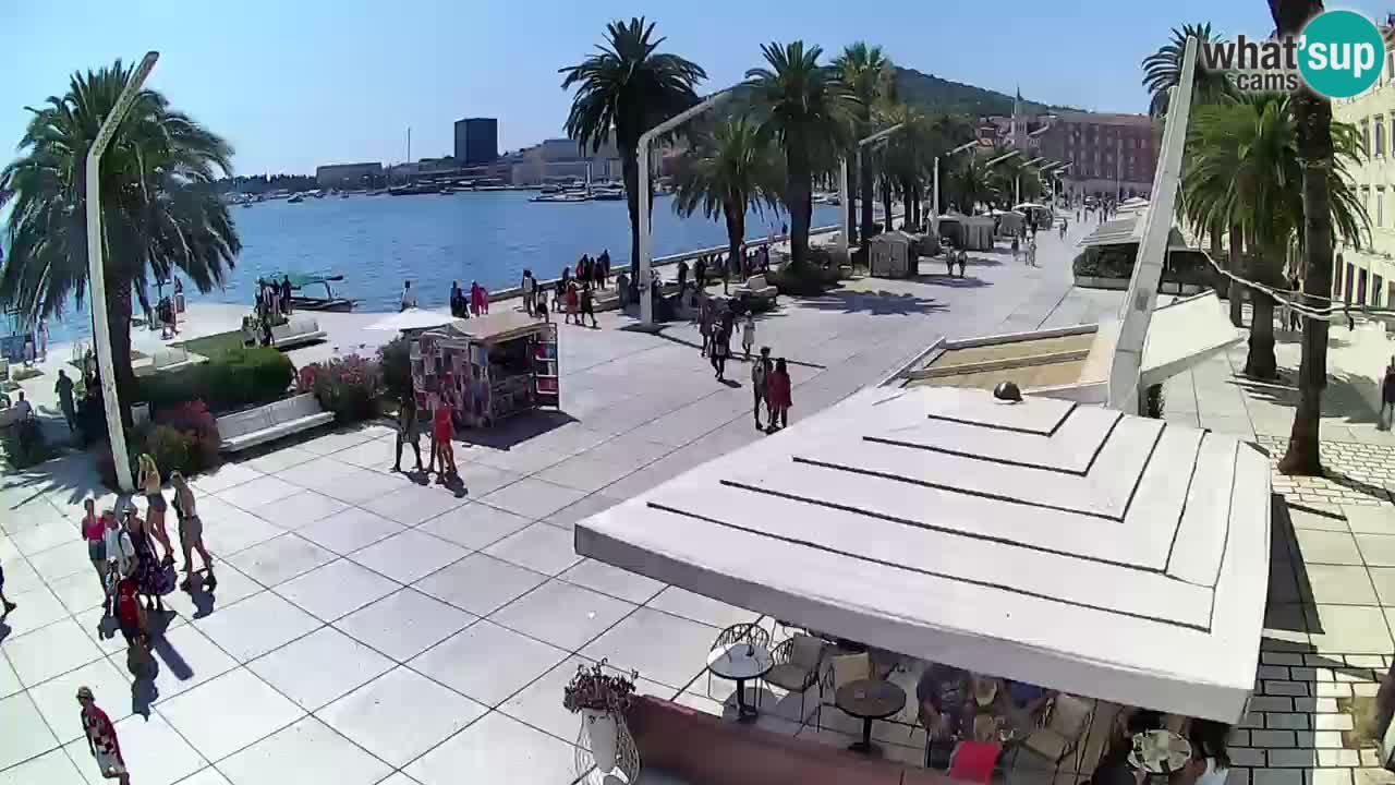 Split riva webcam