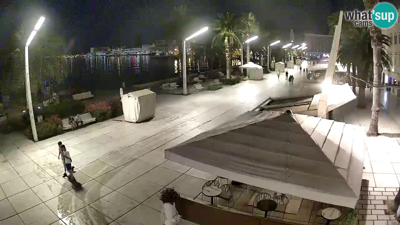 Split camera en vivo – Riva