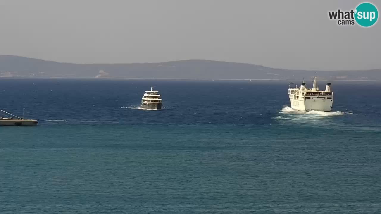Webcam LIVE Split riva and port