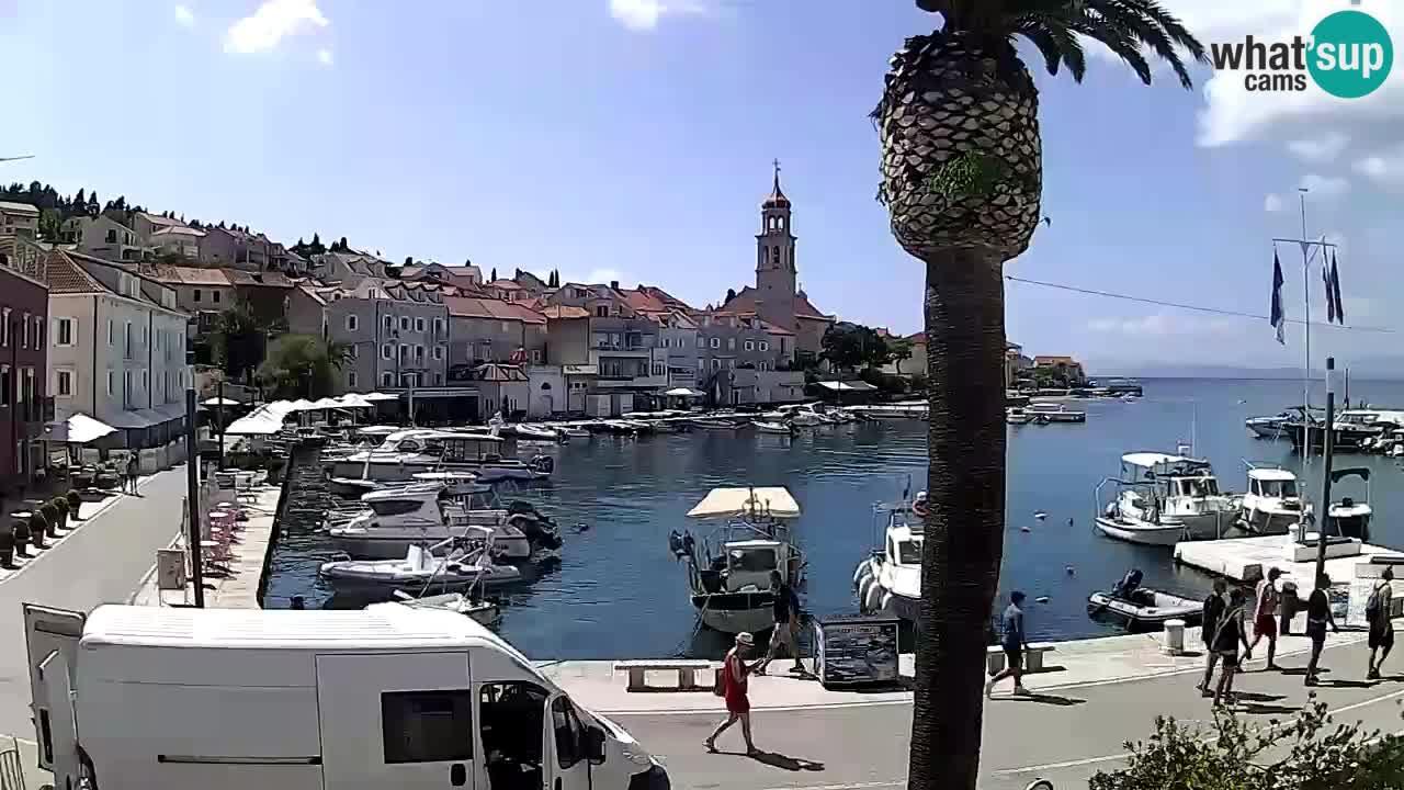Kamera v živo Sutivan – otok Brač