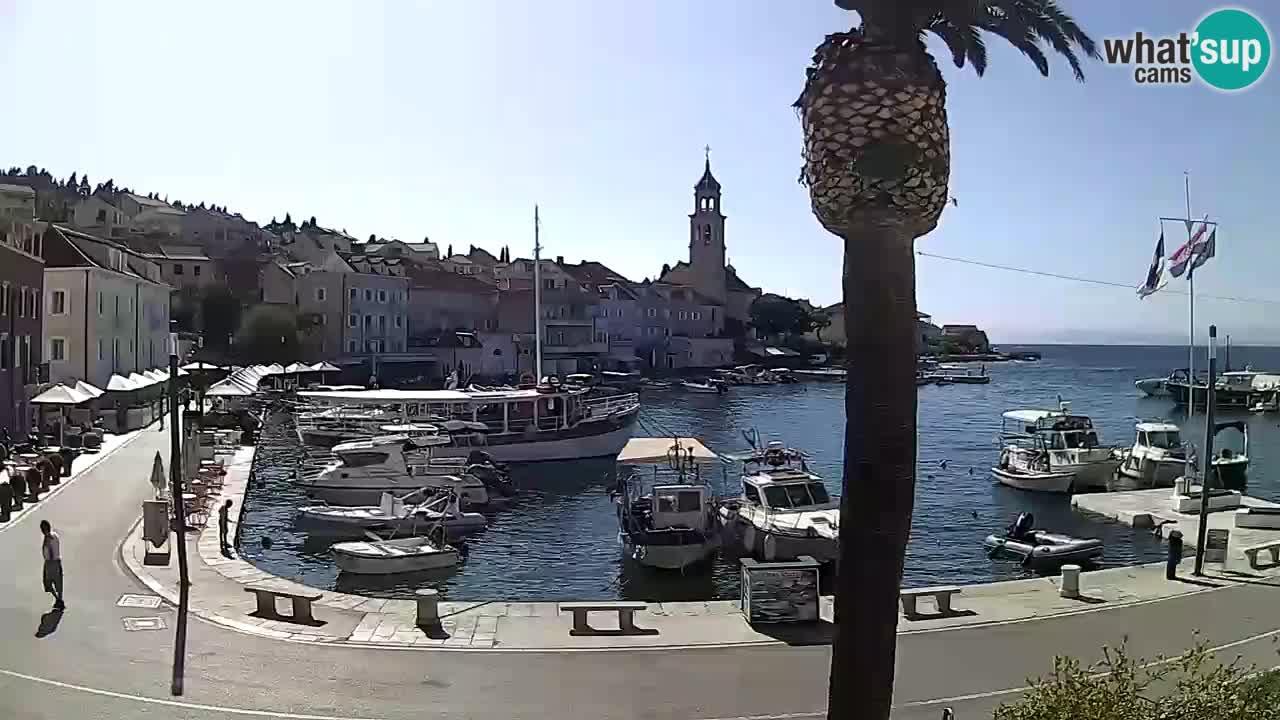 Web kamera Sutivan – otok Brač