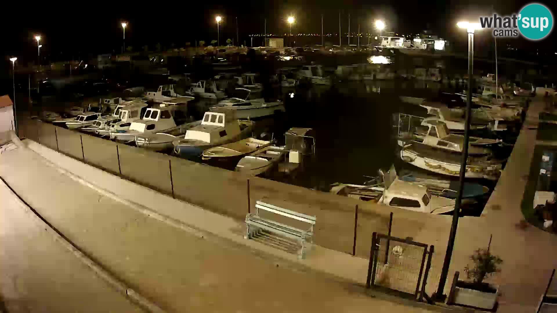 Webcam Live Tkon – Yachthafen