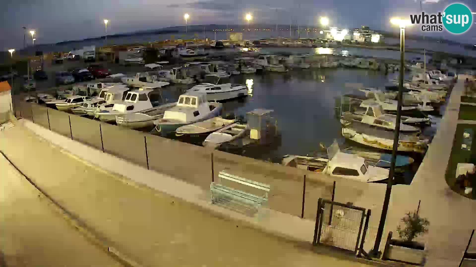 Spletna kamera Tkon – Marina