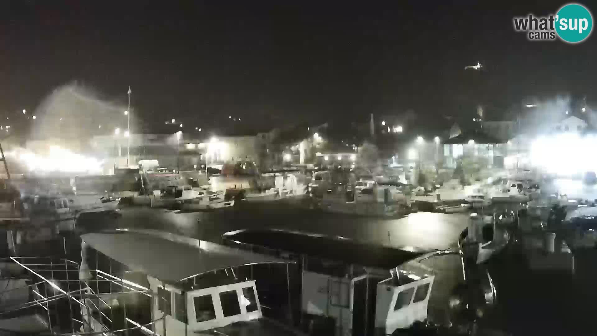 Webcam Tkon – marina and city