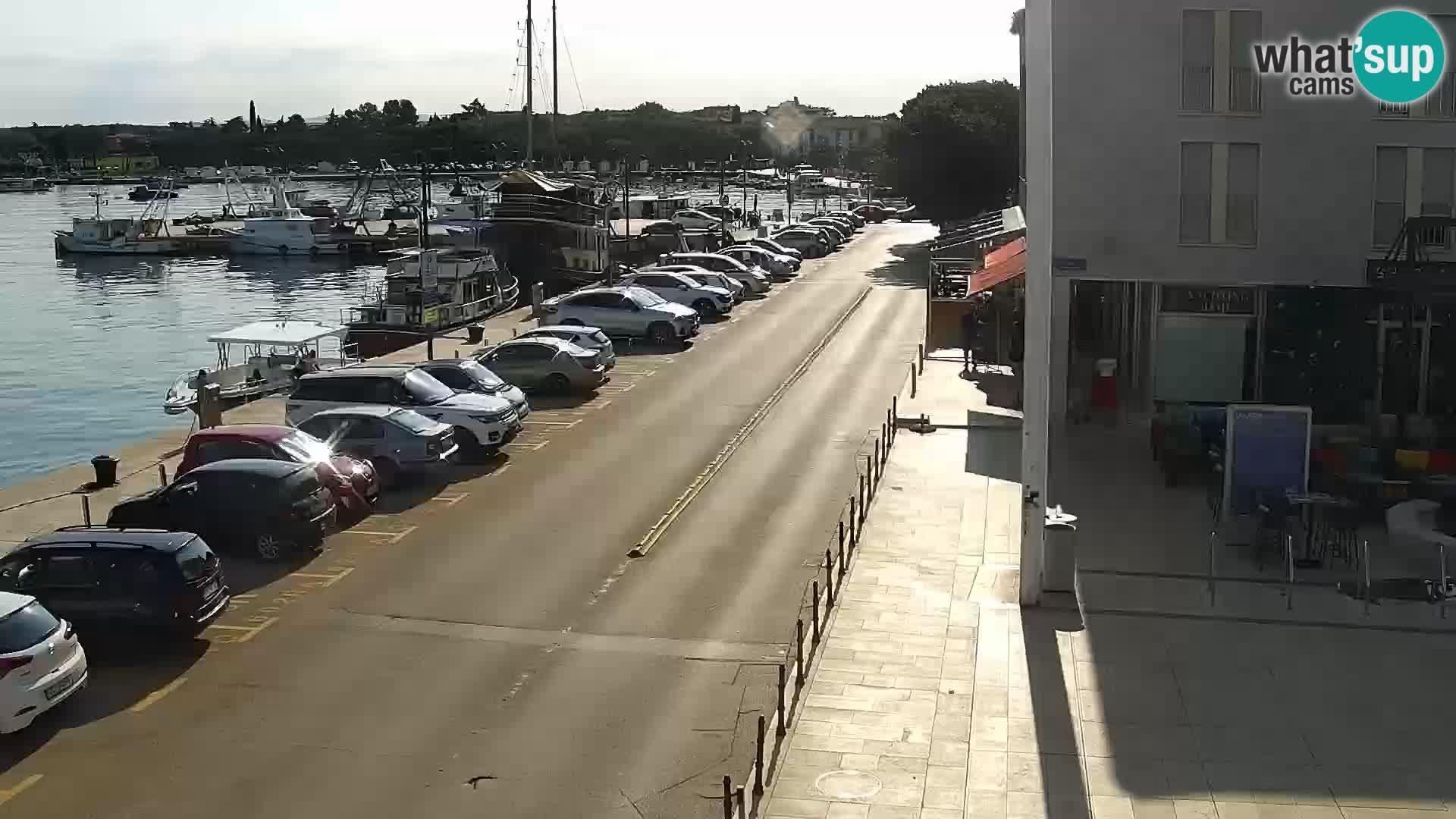 Trg Svobode – Kamera u živo Umag