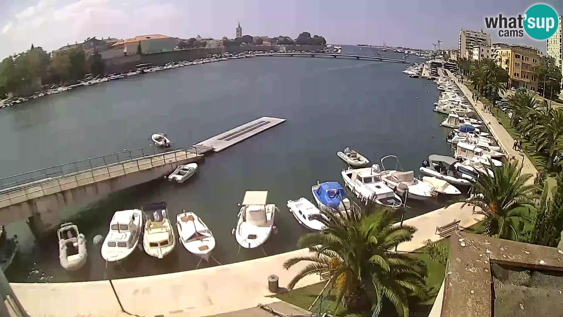 Zadar – Club d'aviron Jadran