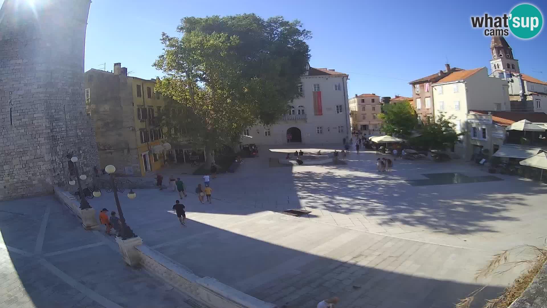 Zadar – Trg Petra Zoranića
