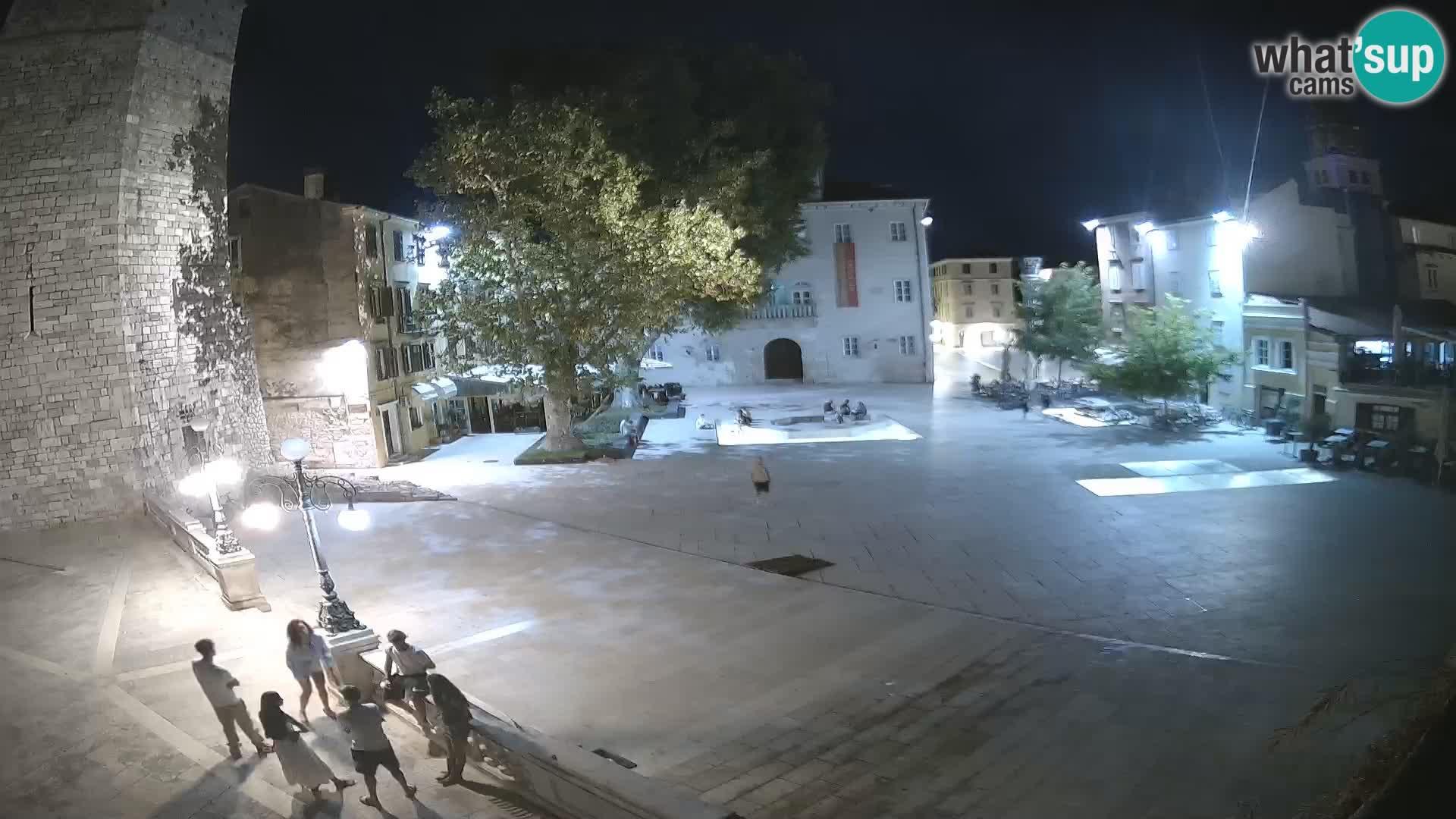 Zara – Trg Petra Zoranića